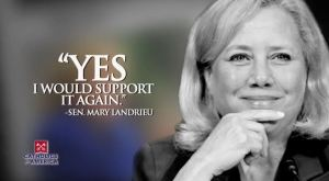 LANDRIEU - YES I WOULD SUPPORT IT AGAIN